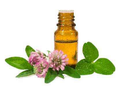 Essential oils – Eatonslater.com Health food & online health store