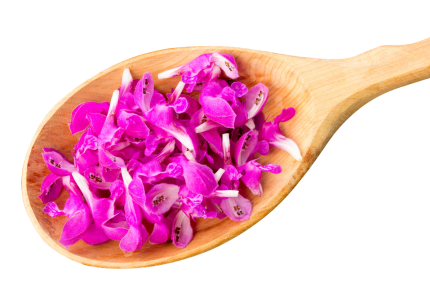 Lavender on a wooden spoon – Eatonslater.com Health food & online health store